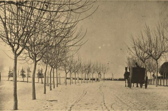 1890 neve al gianicolo carrozza di giovanni primoli