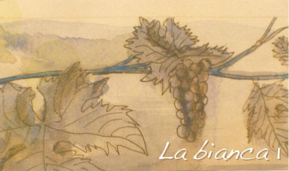 grappe 2 1